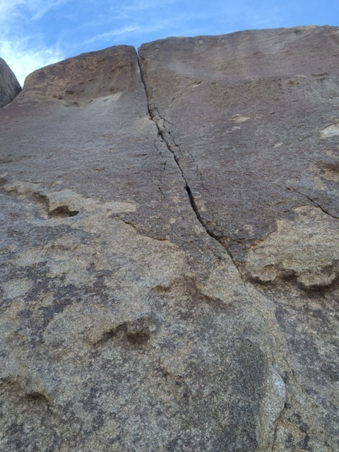Photos and beta of Joshua Tree Rock climbing COMMON CLIMBER